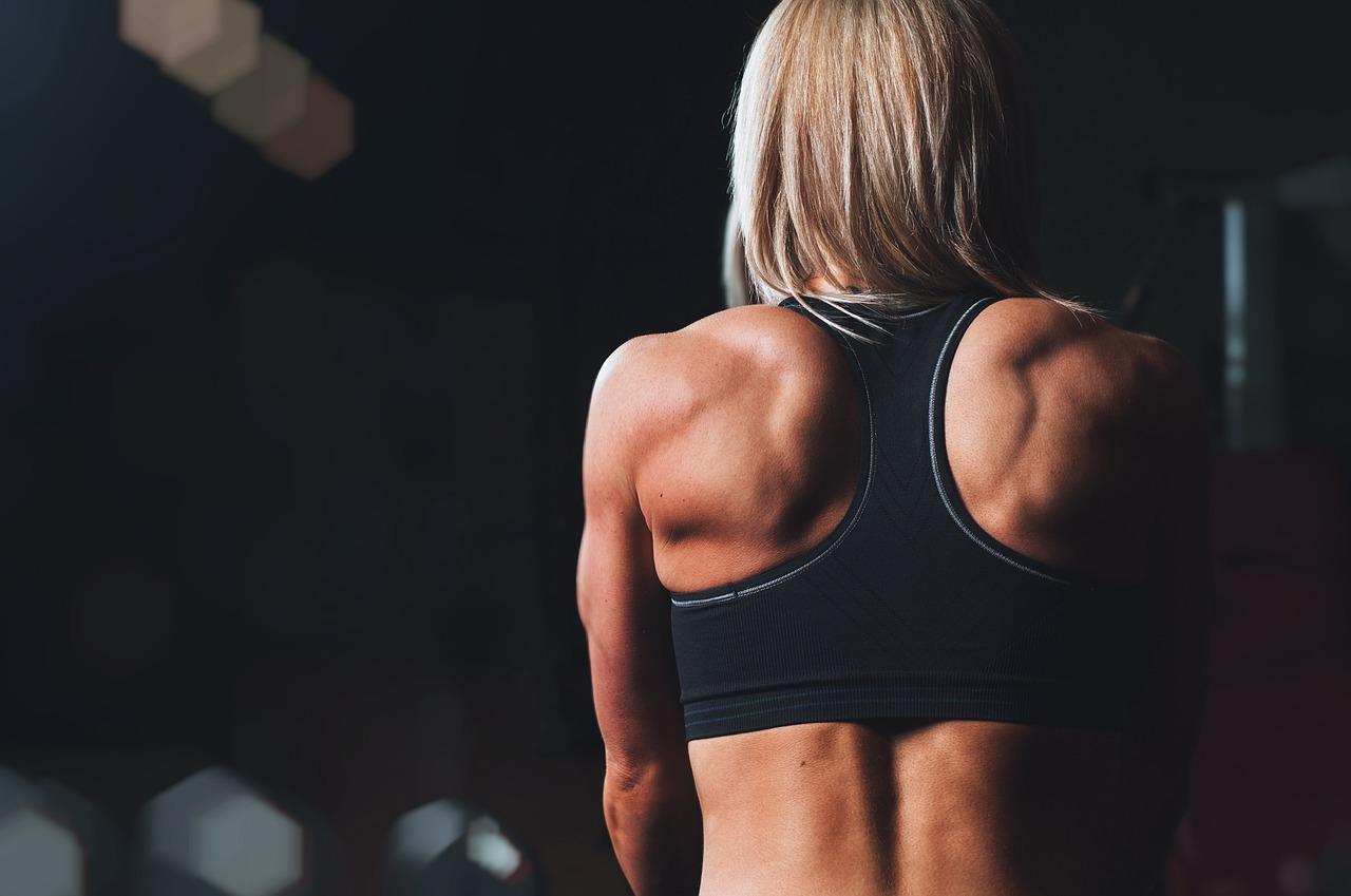 Quelle est l'importance d'un élastique de musculation?